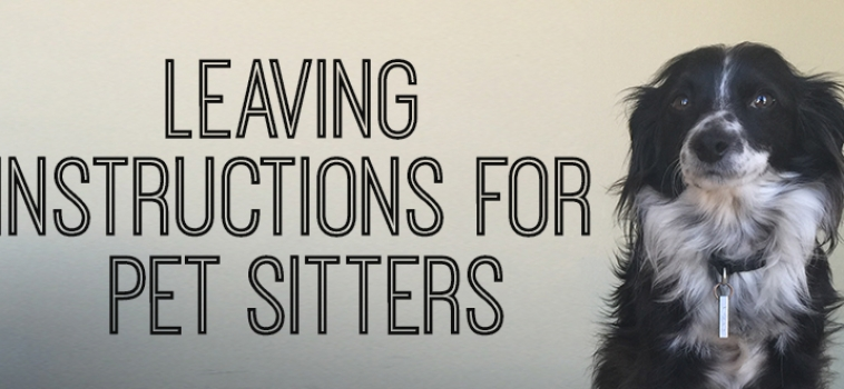 The One Pet-Sitter Secret Every Pet Owner Should Know!